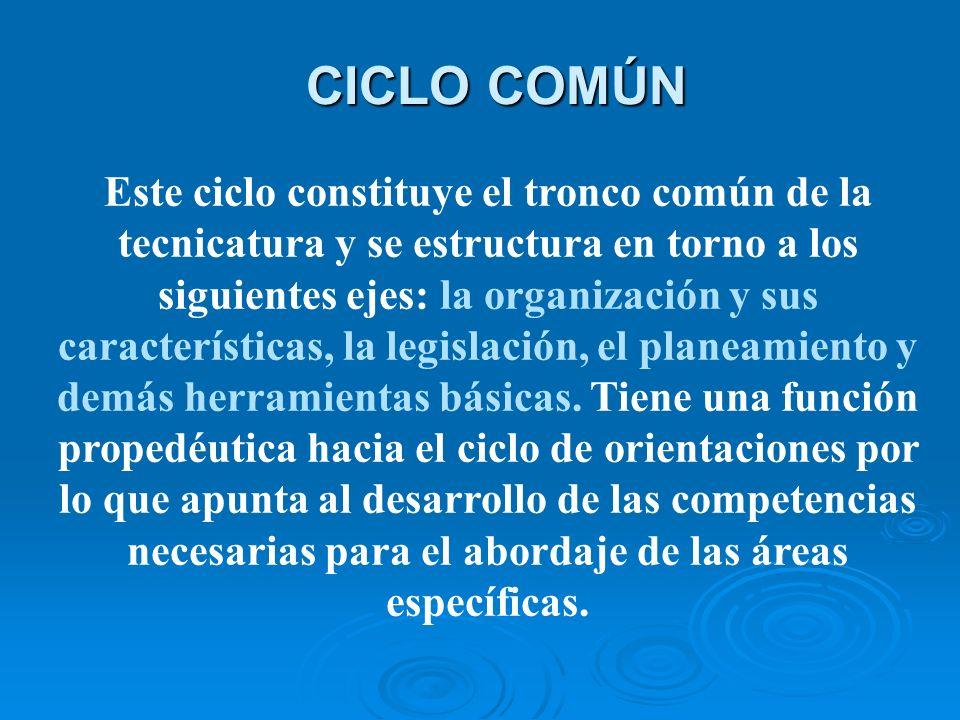 CICLO COMÚN Este ciclo constituye el tronco común de la tecnicatura y se estructura en torno a los siguientes ejes: la organización y sus características, la legislación, el planeamiento y demás herramientas básicas.