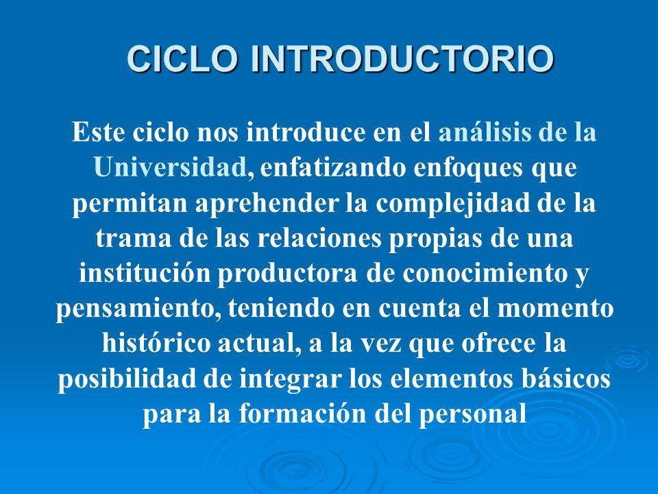 CICLO INTRODUCTORIO Este ciclo nos introduce en el análisis de la Universidad, enfatizando enfoques que permitan aprehender la complejidad de la trama