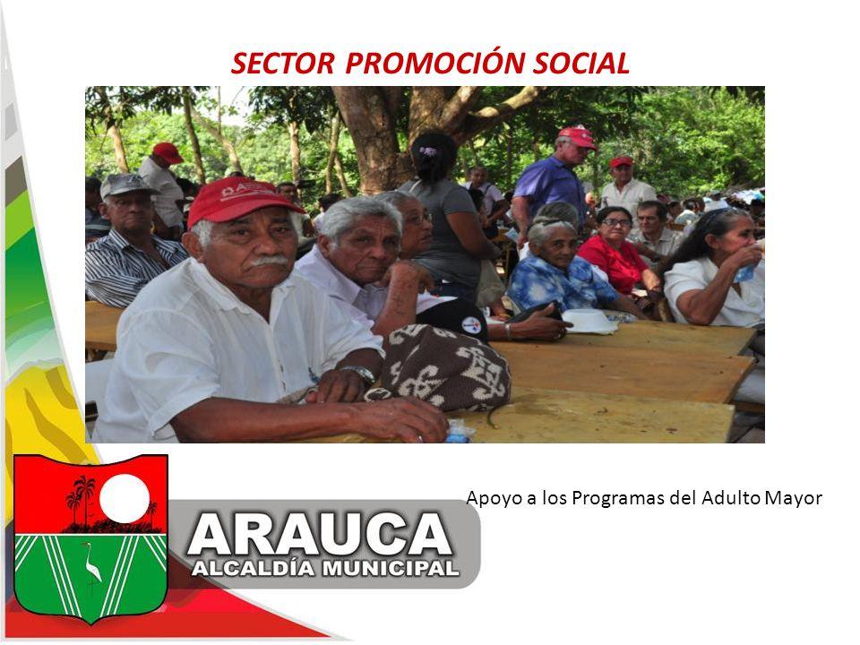 Apoyo a los Programas del Adulto Mayor