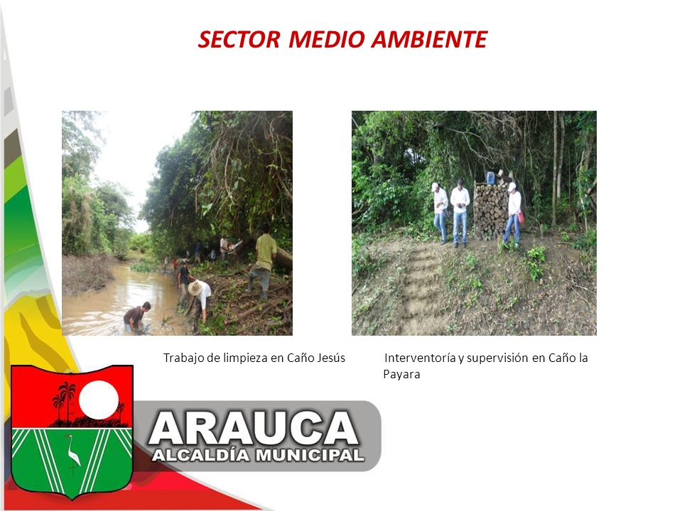 SECTOR MEDIO AMBIENTE Trabajo de limpieza en Caño Jesús Interventoría y supervisión en Caño la Payara