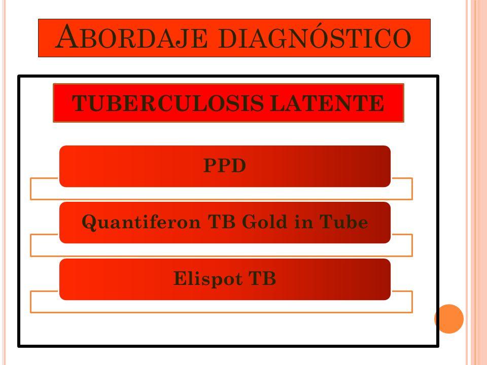 A BORDAJE DIAGNÓSTICO PPDQuantiferon TB Gold in TubeElispot TB TUBERCULOSIS LATENTE