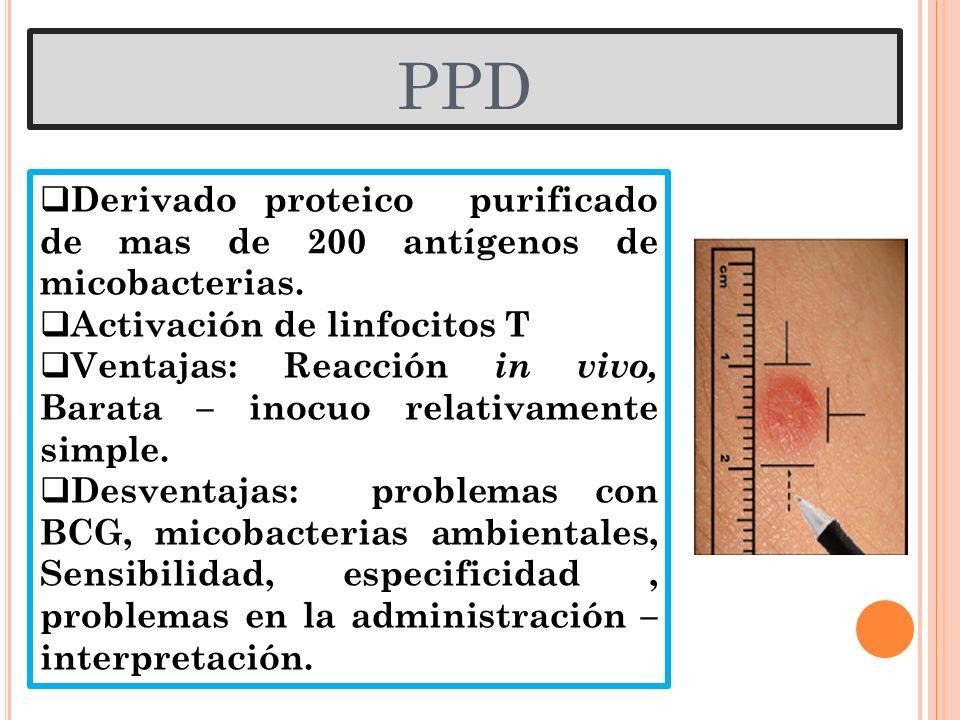 PPD Derivado proteico purificado de mas de 200 antígenos de micobacterias. Activación de linfocitos T Ventajas: Reacción in vivo, Barata – inocuo rela