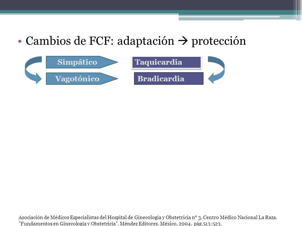 Cambios de FCF: adaptación protección Simpático Vagotónico Taquicardia Bradicardia Asociación de Médicos Especialistas del Hospital de Ginecología y O