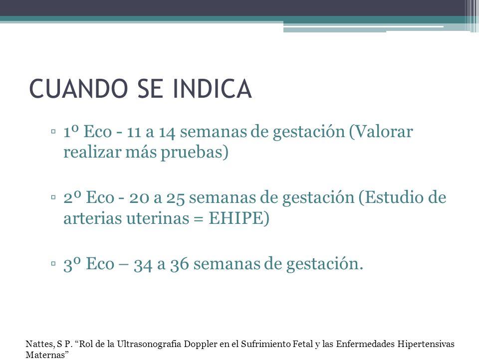 CUANDO SE INDICA 1º Eco - 11 a 14 semanas de gestación (Valorar realizar más pruebas) 2º Eco - 20 a 25 semanas de gestación (Estudio de arterias uteri