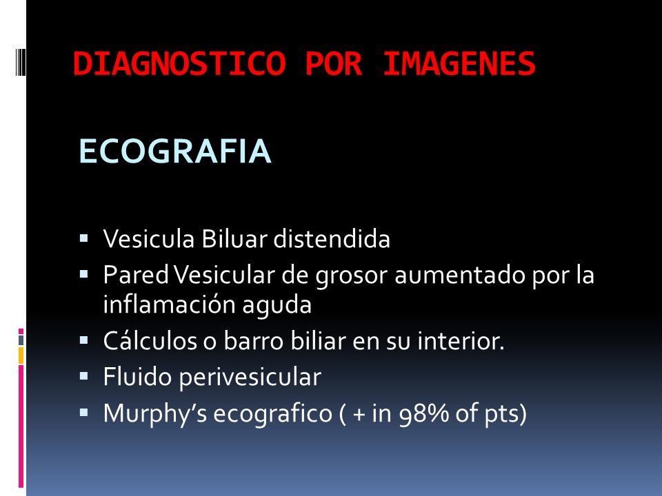 DIAGNOSTICO POR IMAGENES ECOGRAFIA Vesicula Biluar distendida Pared Vesicular de grosor aumentado por la inflamación aguda Cálculos o barro biliar en su interior.
