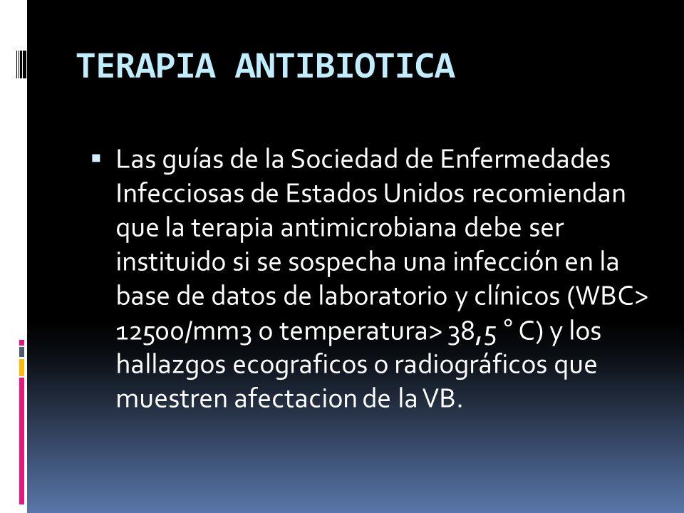 TERAPIA ANTIBIOTICA Las guías de la Sociedad de Enfermedades Infecciosas de Estados Unidos recomiendan que la terapia antimicrobiana debe ser instituido si se sospecha una infección en la base de datos de laboratorio y clínicos (WBC> 12500/mm3 o temperatura> 38,5 ° C) y los hallazgos ecograficos o radiográficos que muestren afectacion de la VB.