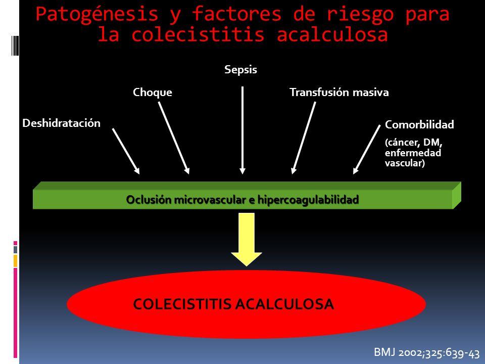 Patogénesis y factores de riesgo para la colecistitis acalculosa COLECISTITIS ACALCULOSA Oclusión microvascular e hipercoagulabilidad Deshidratación Choque BMJ 2002;325:639-43 Sepsis Transfusión masiva Comorbilidad (cáncer, DM, enfermedad vascular)