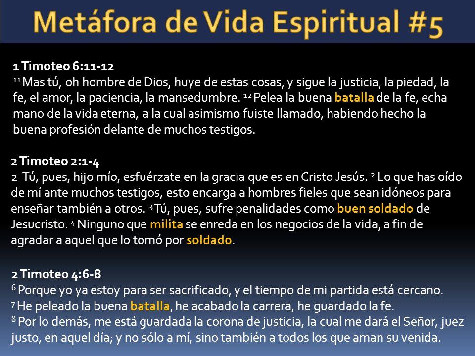 2 Timoteo 2:1-4 2 Tú, pues, hijo mío, esfuérzate en la gracia que es en Cristo Jesús. 2 Lo que has oído de mí ante muchos testigos, esto encarga a hom
