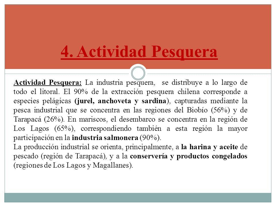 4. Actividad Pesquera Actividad Pesquera: La industria pesquera, se distribuye a lo largo de todo el litoral. El 90% de la extracción pesquera chilena
