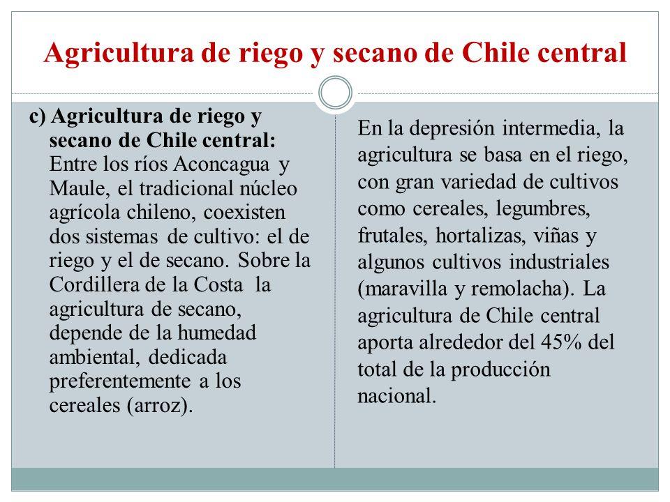 Agricultura de riego y secano de Chile central c) Agricultura de riego y secano de Chile central: Entre los ríos Aconcagua y Maule, el tradicional núc