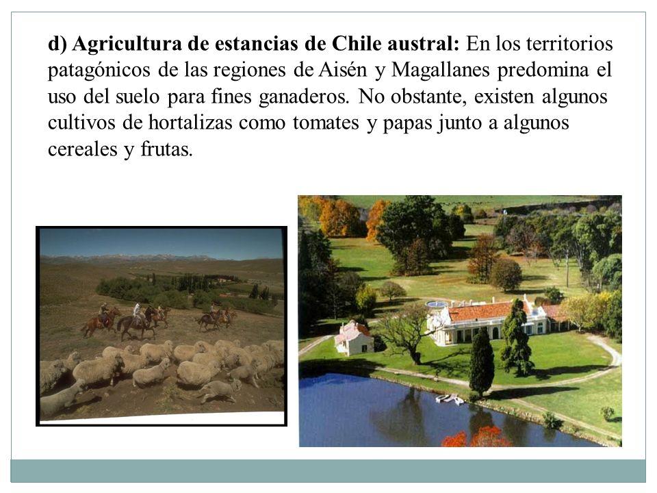 d) Agricultura de estancias de Chile austral: En los territorios patagónicos de las regiones de Aisén y Magallanes predomina el uso del suelo para fin