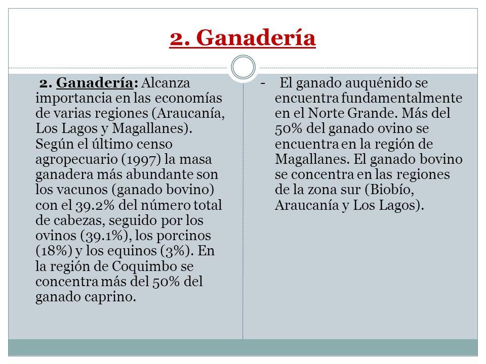 2. Ganadería 2. Ganadería: Alcanza importancia en las economías de varias regiones (Araucanía, Los Lagos y Magallanes). Según el último censo agropecu