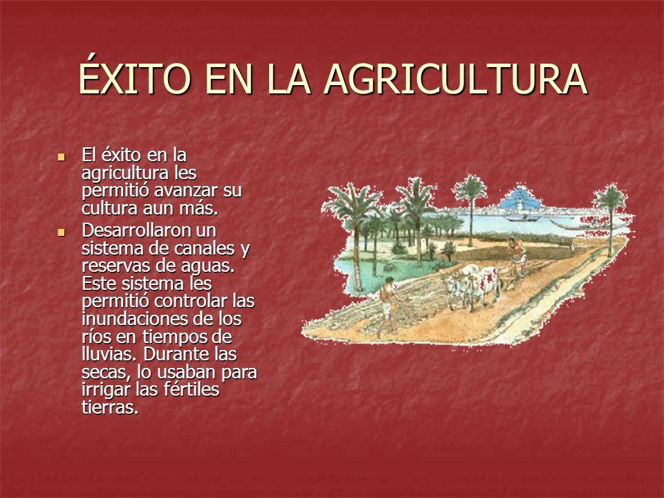 ÉXITO EN LA AGRICULTURA El éxito en la agricultura les permitió avanzar su cultura aun más. El éxito en la agricultura les permitió avanzar su cultura