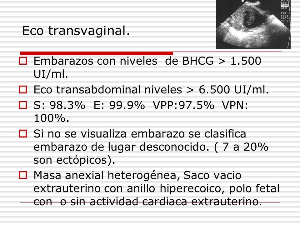 Eco transvaginal. Embarazos con niveles de BHCG > 1.500 UI/ml. Eco transabdominal niveles > 6.500 UI/ml. S: 98.3% E: 99.9% VPP:97.5% VPN: 100%. Si no