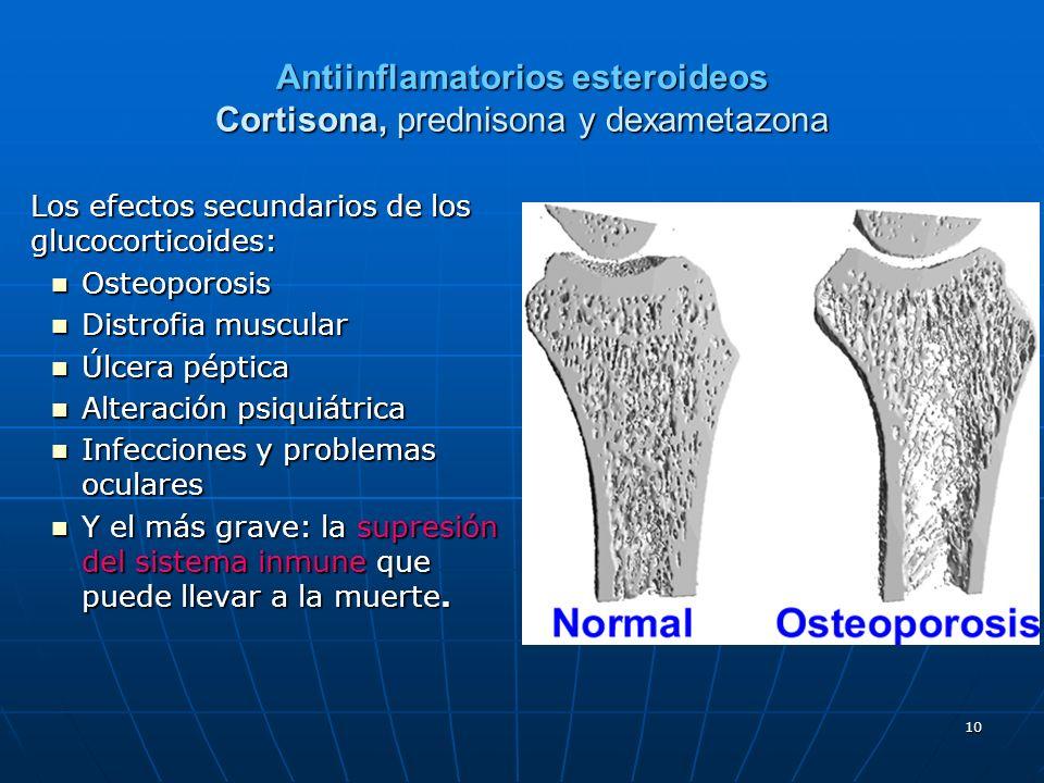 10 Antiinflamatorios esteroideos Cortisona, prednisona y dexametazona Los efectos secundarios de los glucocorticoides: Osteoporosis Osteoporosis Distr