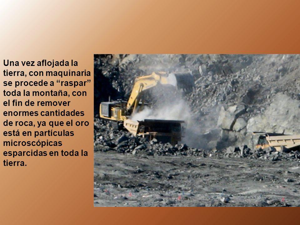 En las minas a cielo abierto, para extraer un kilogramo de oro se necesitan remover entre 130 a 150 TONELADAS DE TIERRA.