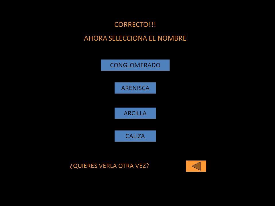 CORRECTO!!! AHORA SELECCIONA EL NOMBRE CONGLOMERADO ARENISCA ARCILLA ¿QUIERES VERLA OTRA VEZ? CALIZA