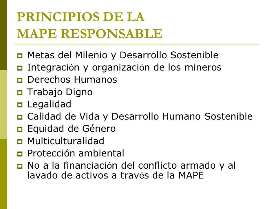 PRINCIPIOS DE LA MAPE RESPONSABLE Metas del Milenio y Desarrollo Sostenible Integraci ó n y organizaci ó n de los mineros Derechos Humanos Trabajo Dig