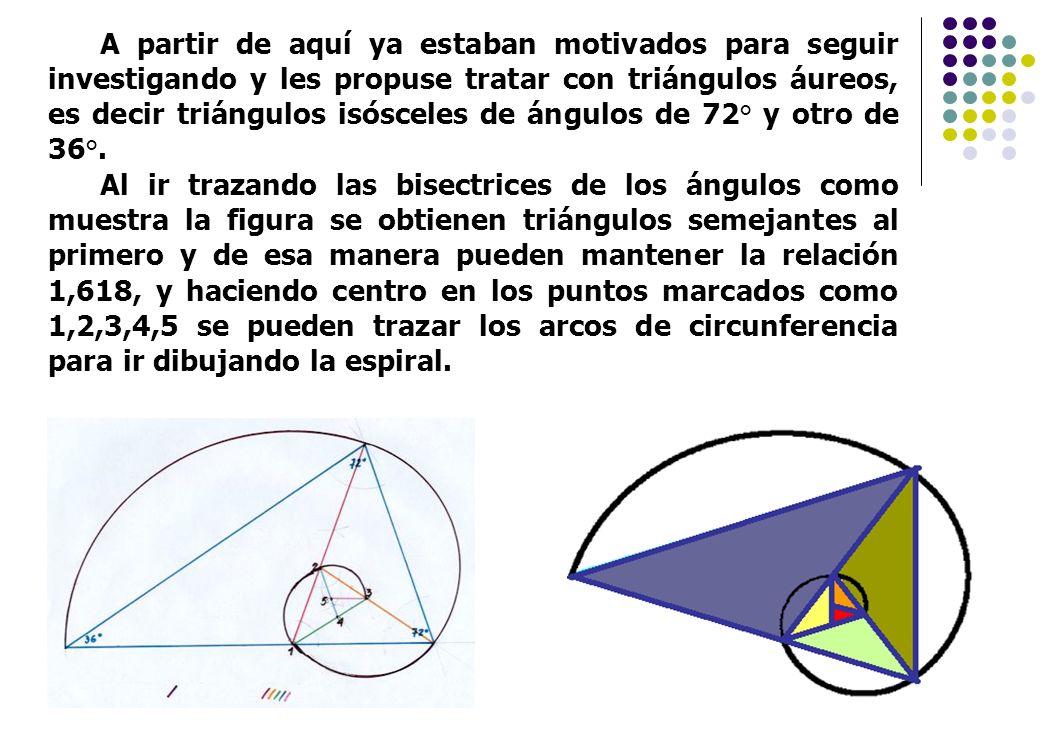 A partir de aquí ya estaban motivados para seguir investigando y les propuse tratar con triángulos áureos, es decir triángulos isósceles de ángulos de