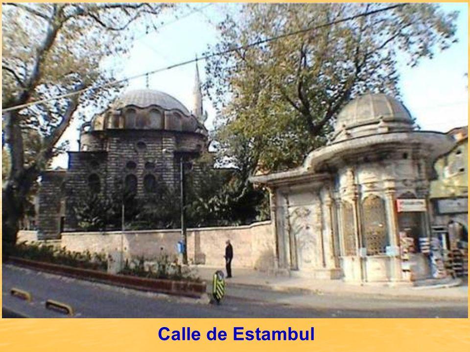 LA IGLESIA DE SAN SALVADOR EN CHORA (MUSEO DE KARIYE) En esta Iglesia- Museo, se encuentran los frescos y mosaicos de mas calidad en Estambul.