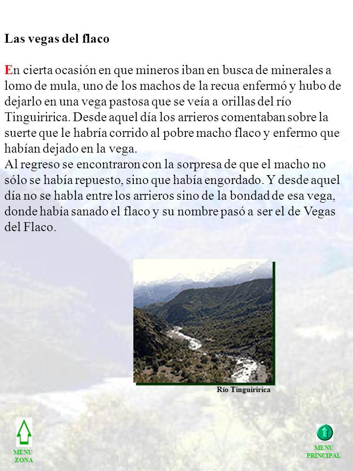 Las vegas del flaco En cierta ocasión en que mineros iban en busca de minerales a lomo de mula, uno de los machos de la recua enfermó y hubo de dejarlo en una vega pastosa que se veía a orillas del río Tinguiririca.