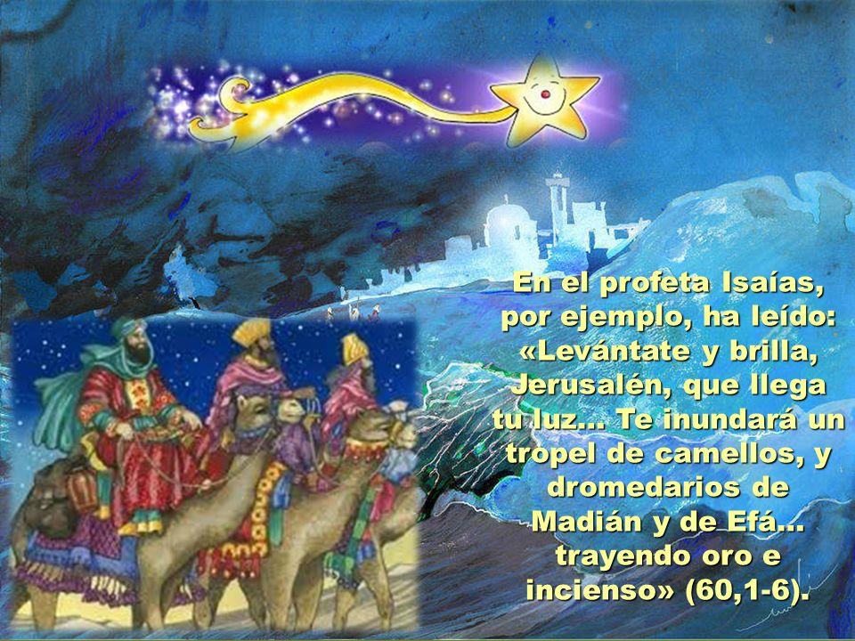 En el profeta Isaías, por ejemplo, ha leído: «Levántate y brilla, Jerusalén, que llega tu luz… Te inundará un tropel de camellos, y dromedarios de Madián y de Efá… trayendo oro e incienso» (60,1-6).