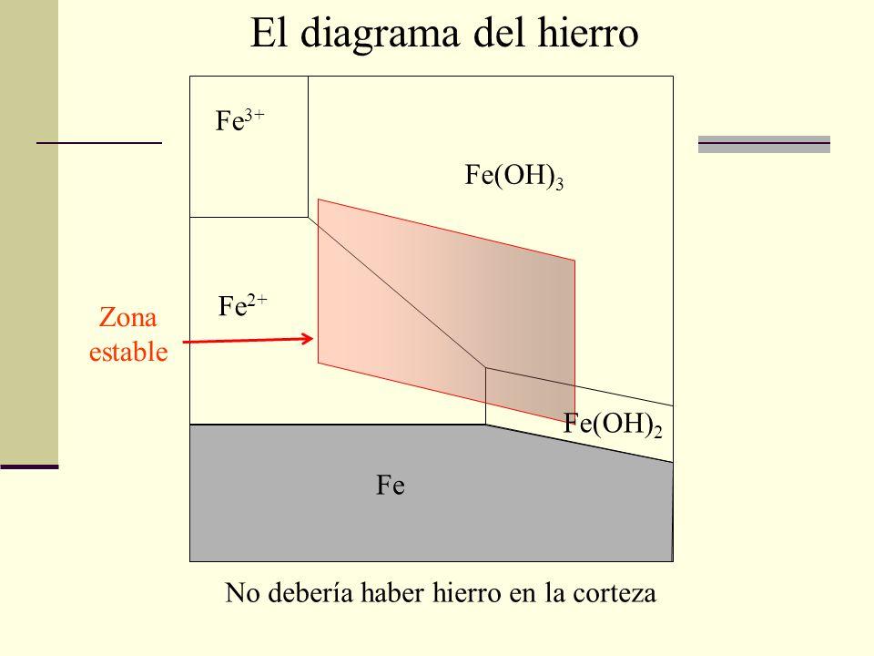 Fe 3+ Fe(OH) 3 Fe(OH) 2 Fe 2+ Fe No debería haber hierro en la corteza Zona estable El diagrama del hierro