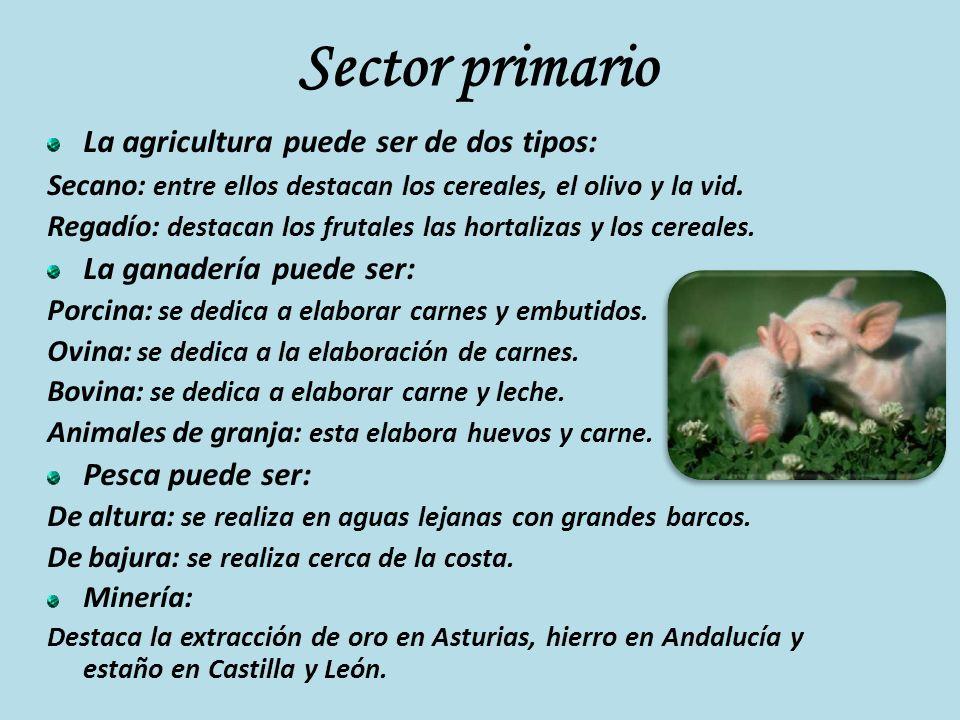 Sector primario La agricultura puede ser de dos tipos: Secano: entre ellos destacan los cereales, el olivo y la vid. Regadío: destacan los frutales la
