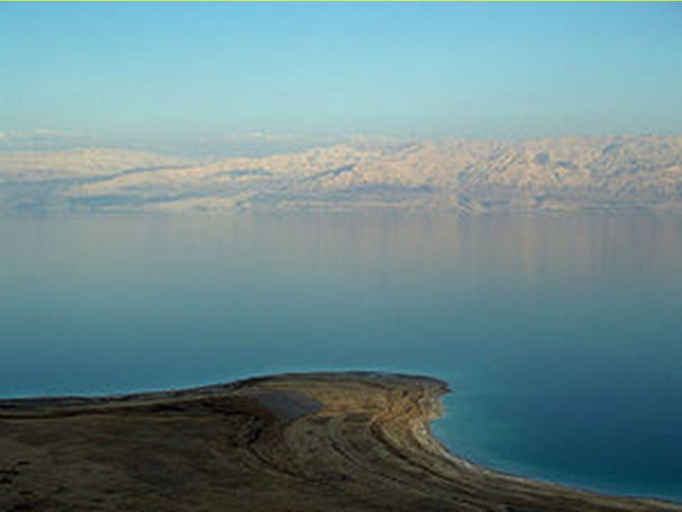 Desde 1947 se han hallado muchos rollos bíblicos y extrabíblicos en la zona occidental del mar Muerto, llamados comúnmente los Rollos del mar Muerto.