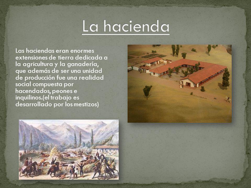 Las haciendas eran enormes extensiones de tierra dedicada a la agricultura y la ganadería, que además de ser una unidad de producción fue una realidad