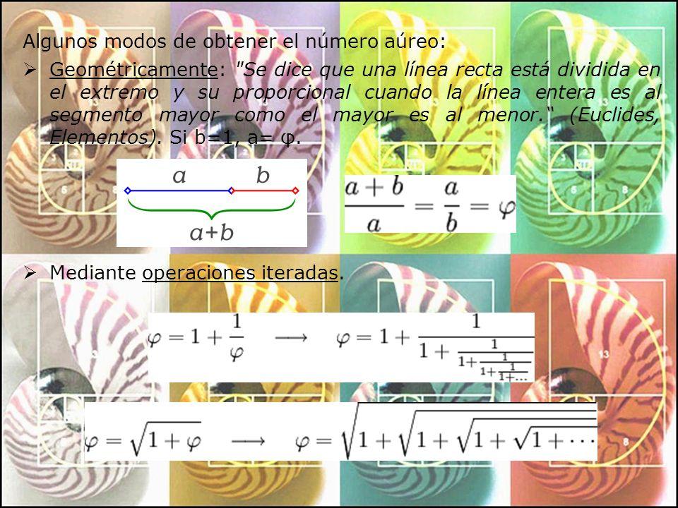 Algebraicamente: Como solución de esta ecuación Como límite del cociente de términos consecutivos de la Sucesión de Fibonacci: 1, 2, 3, 5, 8, 13, 21, 34, …, F n, F n+1, … A partir del cuadrado de la lado 2, como ya demostró Euclides: