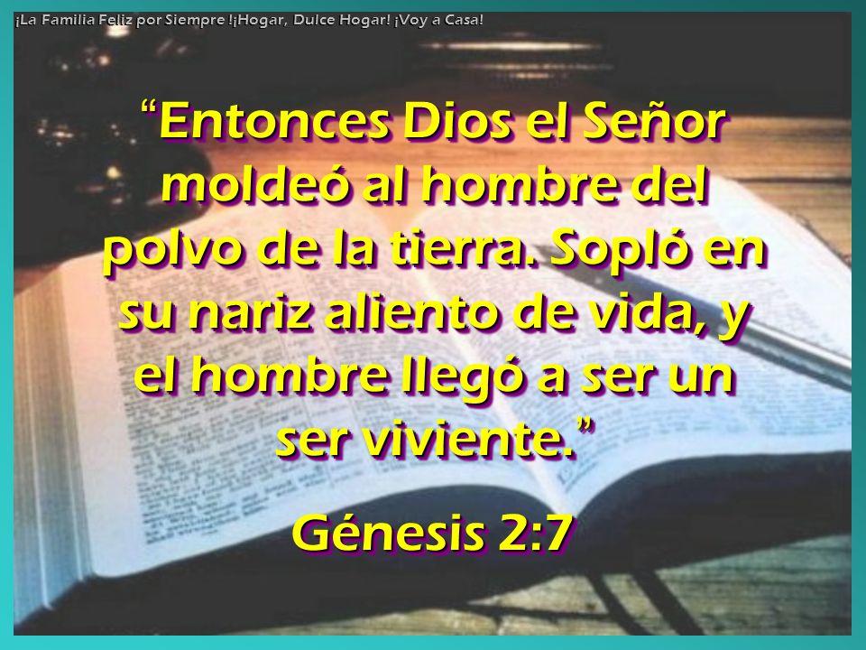 Entonces Dios el Señor moldeó al hombre del polvo de la tierra. Sopló en su nariz aliento de vida, y el hombre llegó a ser un ser viviente. Entonces D