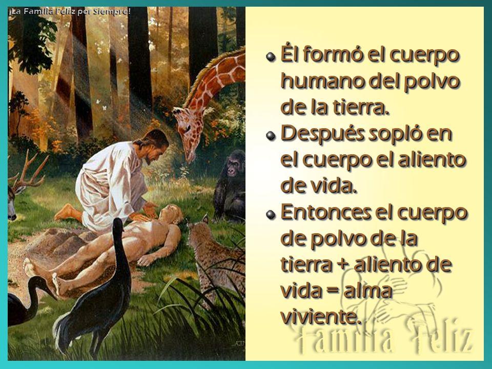 Él formó el cuerpo humano del polvo de la tierra. Después sopló en el cuerpo el aliento de vida. Entonces el cuerpo de polvo de la tierra + aliento de