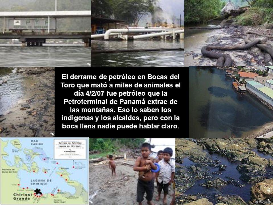 El derrame de petróleo en Bocas del Toro que mató a miles de animales el día 4/2/07 fue petróleo que la Petroterminal de Panamá extrae de las montañas