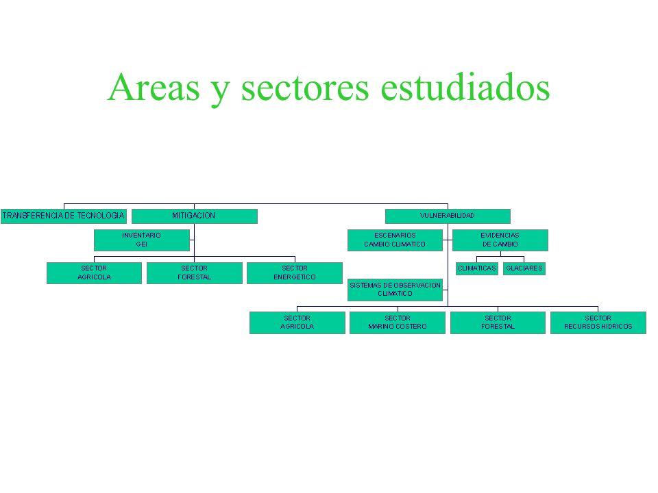 Areas y sectores estudiados