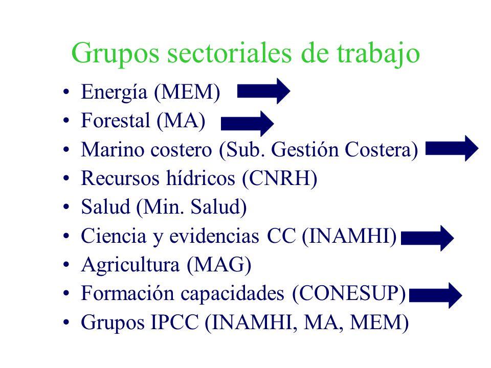 Grupos sectoriales de trabajo Energía (MEM) Forestal (MA) Marino costero (Sub. Gestión Costera) Recursos hídricos (CNRH) Salud (Min. Salud) Ciencia y