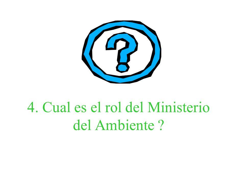 4. Cual es el rol del Ministerio del Ambiente ?