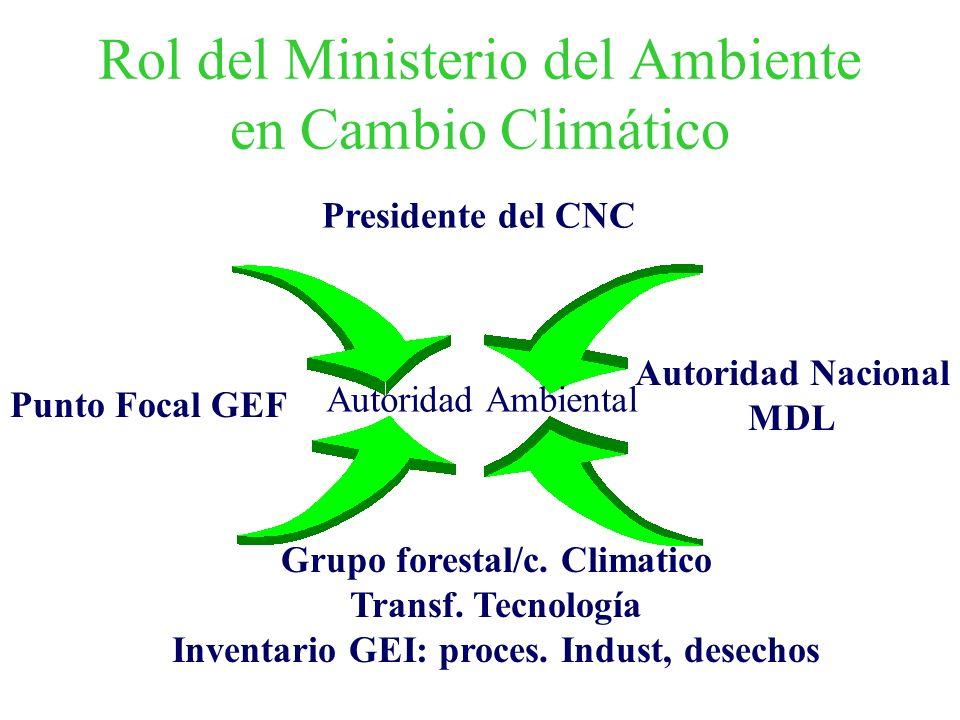 Rol del Ministerio del Ambiente en Cambio Climático Presidente del CNC Grupo forestal/c. Climatico Transf. Tecnología Inventario GEI: proces. Indust,