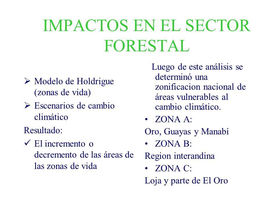 IMPACTOS EN EL SECTOR FORESTAL Modelo de Holdrigue (zonas de vida) Escenarios de cambio climático Resultado: El incremento o decremento de las áreas d