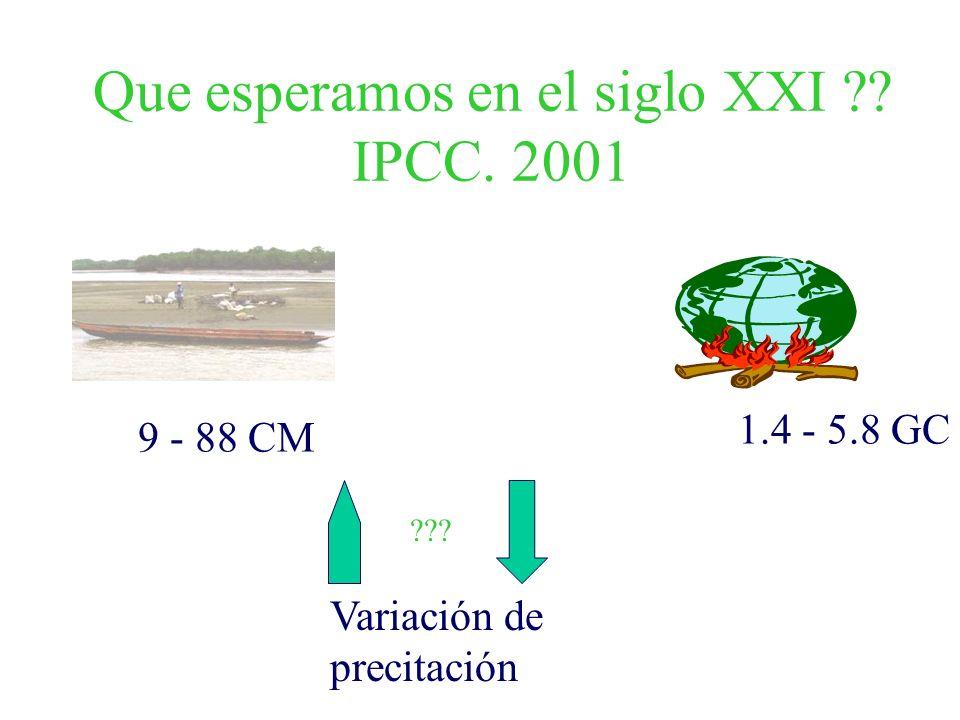 Que esperamos en el siglo XXI ?? IPCC. 2001 1.4 - 5.8 GC 9 - 88 CM Variación de precitación