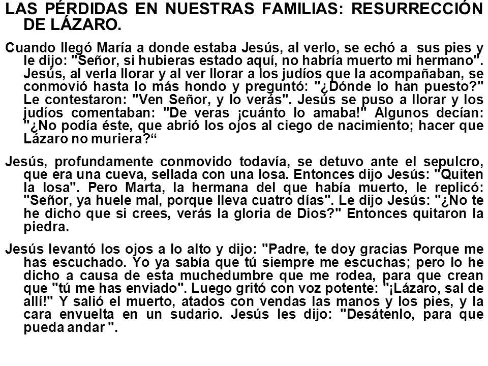 LAS PÉRDIDAS EN NUESTRAS FAMILIAS: RESURRECCIÓN DE LÁZARO. Cuando llegó María a donde estaba Jesús, al verlo, se echó a sus pies y le dijo: