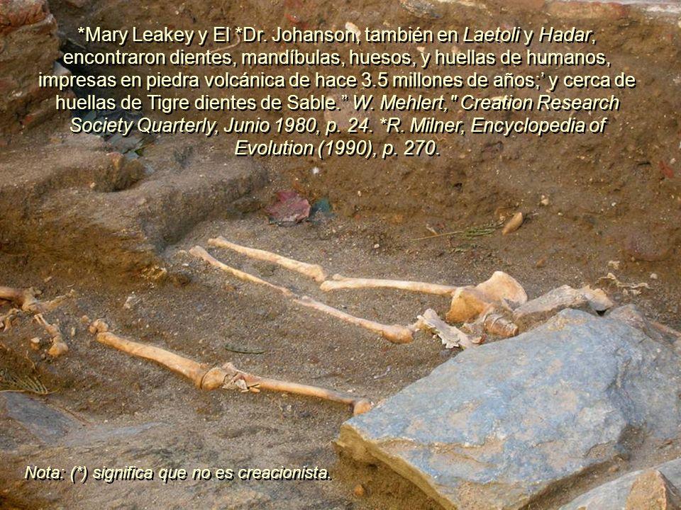 En Laetoli, África Oriental, se descubrieron huellas de pies humanos. Los evolucionistas reconocen que están grabadas en rocas de hace 3 y 4 millones