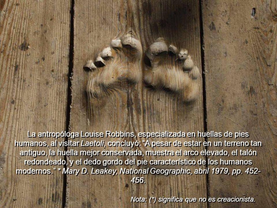 *Mary Leakey y El *Dr. Johanson, también en Laetoli y Hadar, encontraron dientes, mandíbulas, huesos, y huellas de humanos, impresas en piedra volcáni