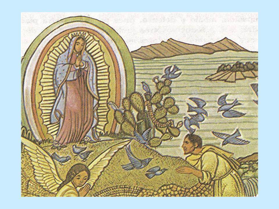 Luego que la vio el señor obispo, él y todos los que allí estaban se arrodillaron; mucho la admiraron; se levantaron; se entristecieron y acongojaron, mostrando que la contemplaron con el corazón y el pensamiento.