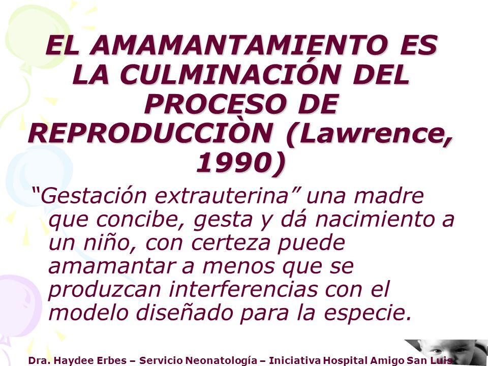 Dra. Haydee Erbes – Servicio Neonatología – Iniciativa Hospital Amigo San Luis EL AMAMANTAMIENTO ES LA CULMINACIÓN DEL PROCESO DE REPRODUCCIÒN (Lawren