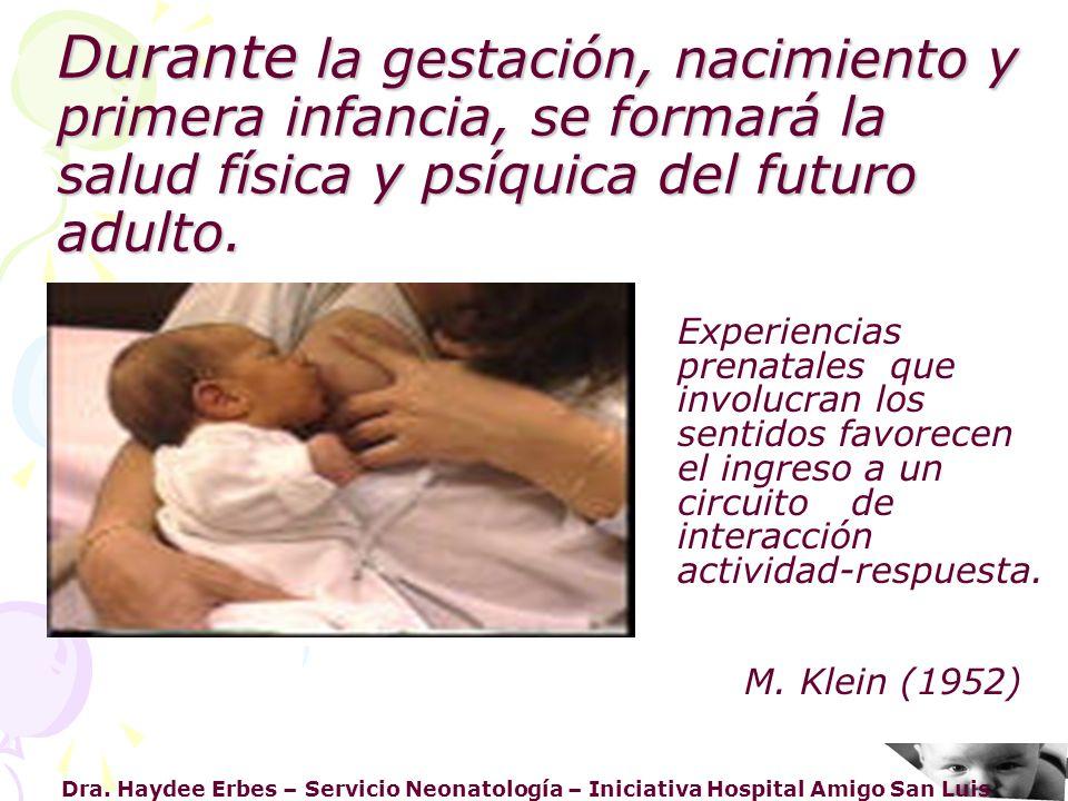 Dra. Haydee Erbes – Servicio Neonatología – Iniciativa Hospital Amigo San Luis Durante la gestación, nacimiento y primera infancia, se formará la salu