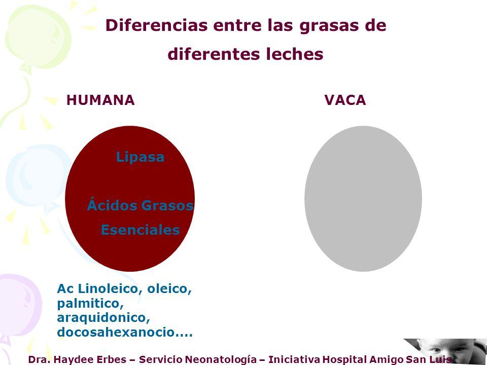 Dra. Haydee Erbes – Servicio Neonatología – Iniciativa Hospital Amigo San Luis Diferencias entre las grasas de diferentes leches HUMANA VACA Lipasa Ác