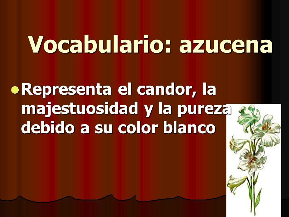 Vocabulario: azucena Representa el candor, la majestuosidad y la pureza debido a su color blanco Representa el candor, la majestuosidad y la pureza de