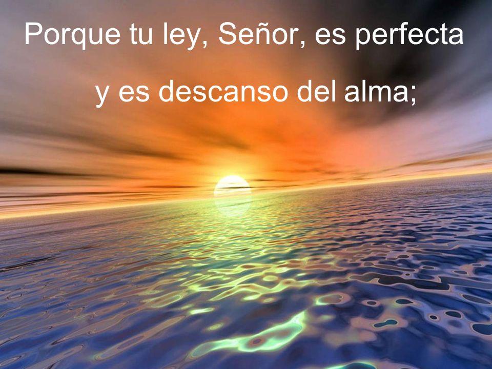 Porque tu ley, Señor, es perfecta y es descanso del alma;