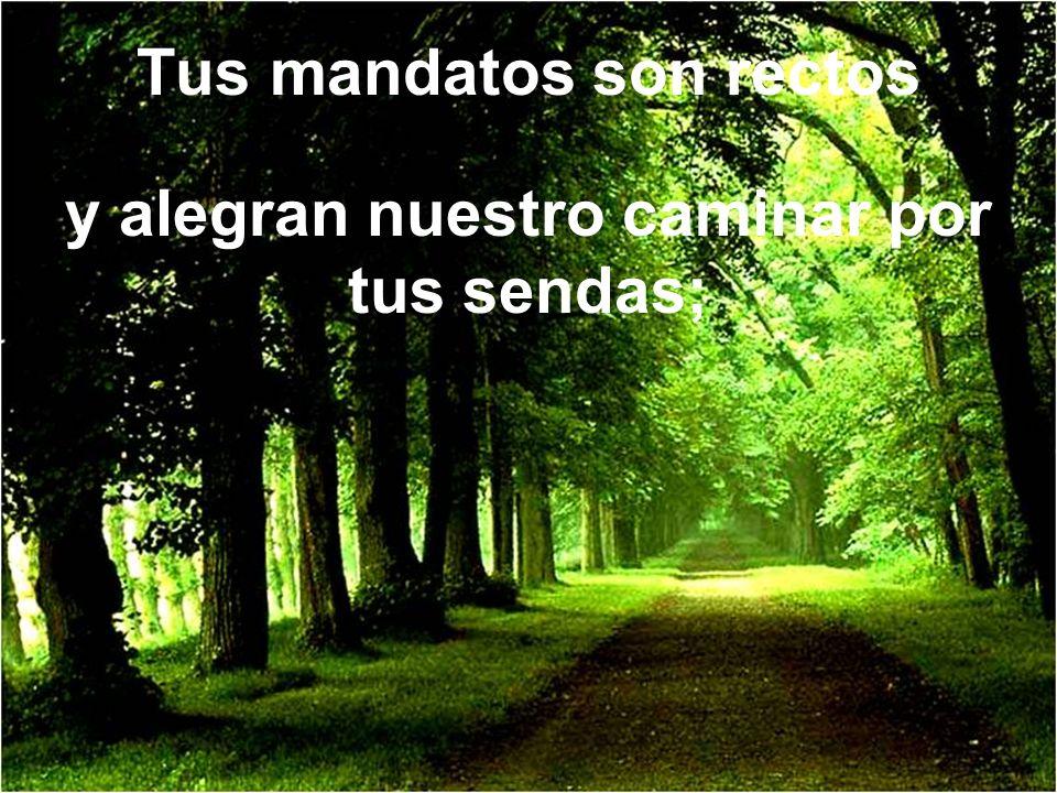 Tus mandatos son rectos y alegran nuestro caminar por tus sendas;